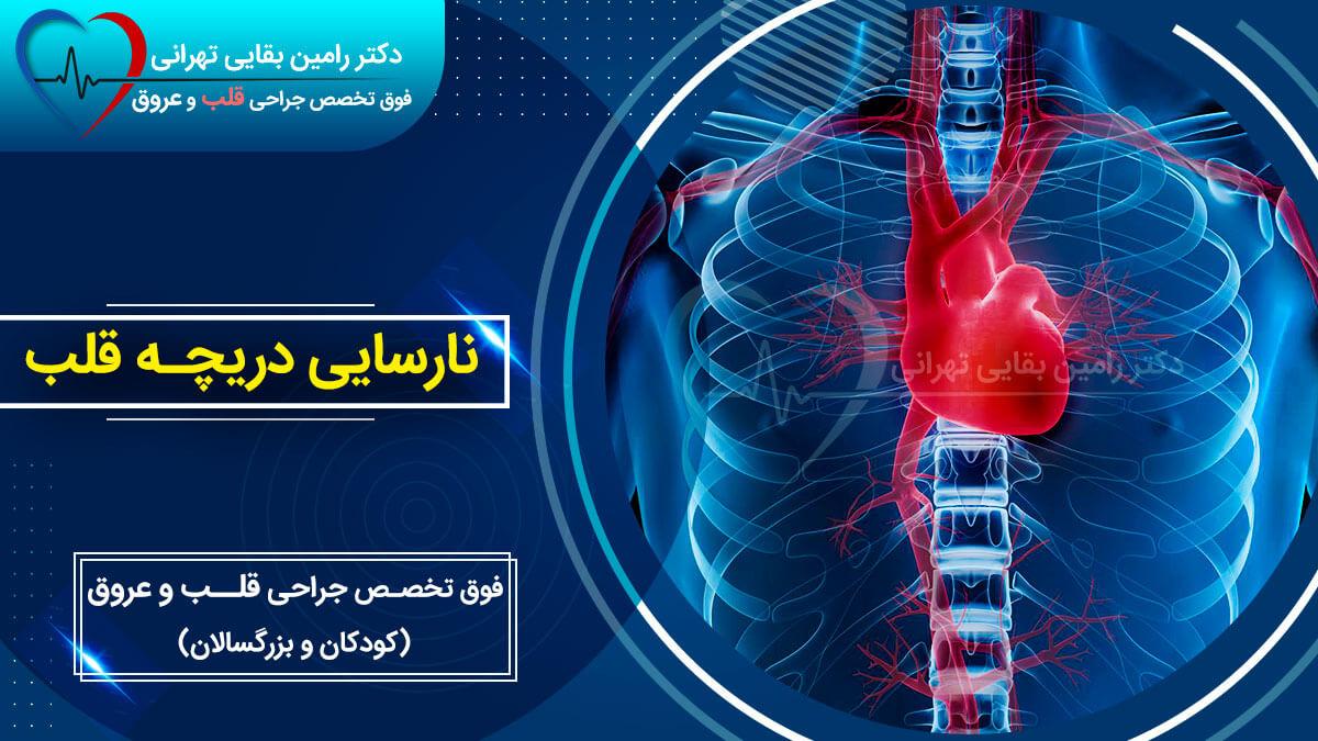 نارسایی دریچه قلب